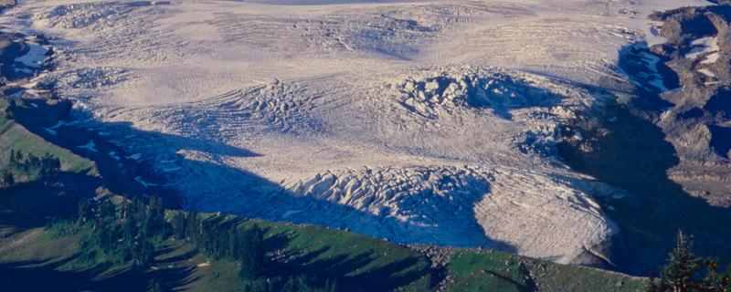glacierseastonpastcrop